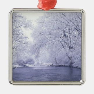 USA, Kentucky, Louisville. Snow covered Christmas Tree Ornament
