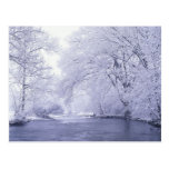 USA, Kentucky, Louisville. Snow covered Postcard