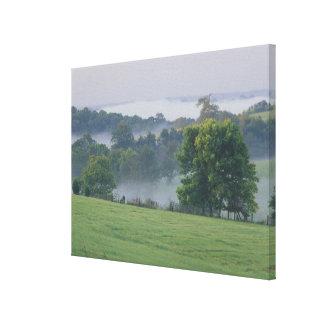 USA, Kentucky. Rolling hills of the Bluegrass Canvas Print