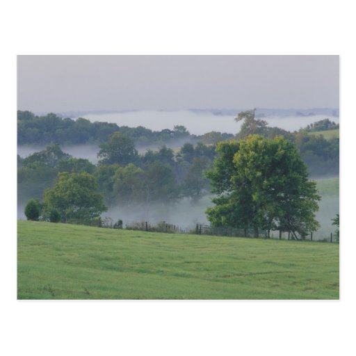 USA, Kentucky. Rolling hills of the Bluegrass Postcards