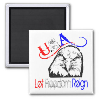 USA Let Freedom Reign Magnet