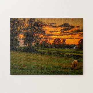 USA, Lexington, Kentucky. Lone horse at sunset 1 Jigsaw Puzzle
