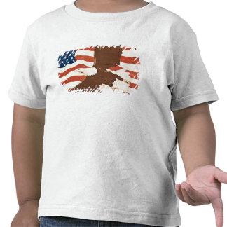 USA, Louisiana, Port Allen. Patriotic mural Shirt