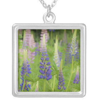 USA, Maine, Acadia National Park. Field of Square Pendant Necklace