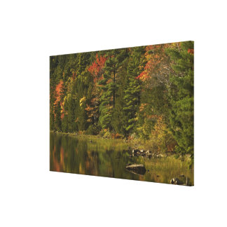 USA; Maine; Acadia NP. Fall reflections at 2 Canvas Print