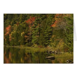 USA; Maine; Acadia NP. Fall reflections at 2 Cards