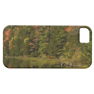 USA; Maine; Acadia NP. Fall reflections at 2 iPhone 5 Covers