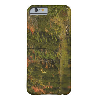 USA; Maine; Acadia NP. Fall reflections at 2 Barely There iPhone 6 Case