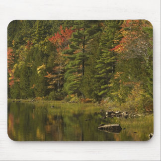 USA; Maine; Acadia NP. Fall reflections at 2 Mouse Pad