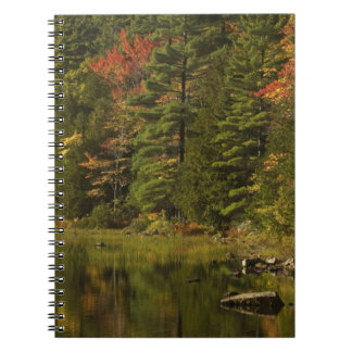 USA; Maine; Acadia NP. Fall reflections at 2 Spiral Notebooks