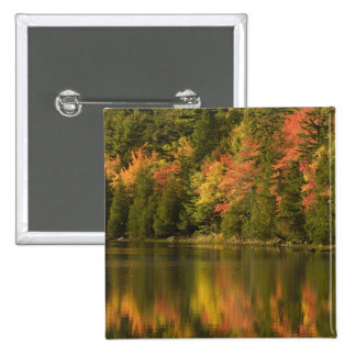 USA; Maine; Acadia NP. Fall reflections at Pinback Buttons