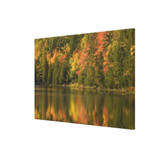 USA; Maine; Acadia NP. Fall reflections at Gallery Wrap Canvas