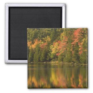 USA; Maine; Acadia NP. Fall reflections at Fridge Magnet