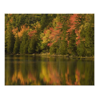 USA; Maine; Acadia NP. Fall reflections at Poster