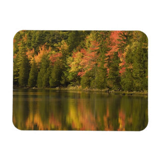 USA; Maine; Acadia NP. Fall reflections at Rectangle Magnets