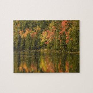USA; Maine; Acadia NP. Fall reflections at Puzzles