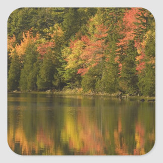 USA; Maine; Acadia NP. Fall reflections at Stickers
