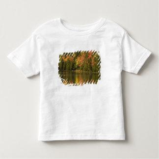 USA; Maine; Acadia NP. Fall reflections at Toddler T-shirt