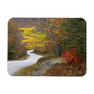 USA, Maine, Camden. Road leading through Camden Magnet