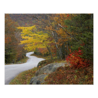 USA, Maine, Camden. Road leading through Camden Posters