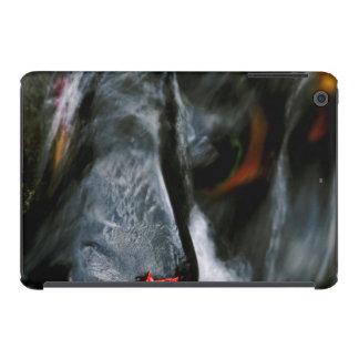 USA, Maine. Maple leaf on black rock in stream iPad Mini Retina Case