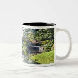 USA, Maine, Northeast Harbor. View of Asticou Mugs