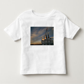 USA, Massachusettes, Boston. US Navy Color Toddler T-shirt