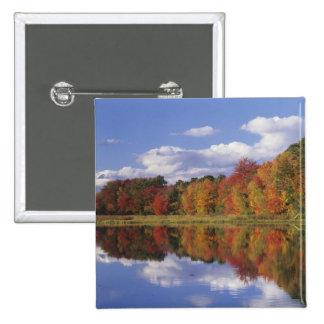 USA, Massachusetts, Acton. Reflection of autumn Button