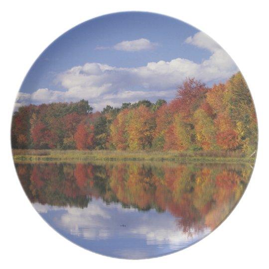 USA, Massachusetts, Acton. Reflection of autumn Dinner Plate