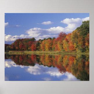 USA, Massachusetts, Acton. Reflection of autumn Poster