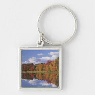 USA, Massachusetts, Acton. Reflection of autumn Silver-Colored Square Keychain
