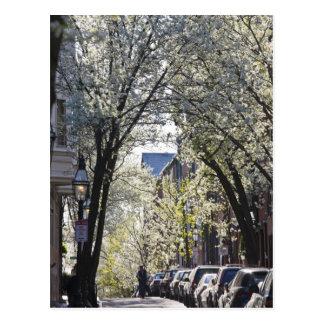 USA, Massachusetts, Boston, Beacon Hill. Postcard