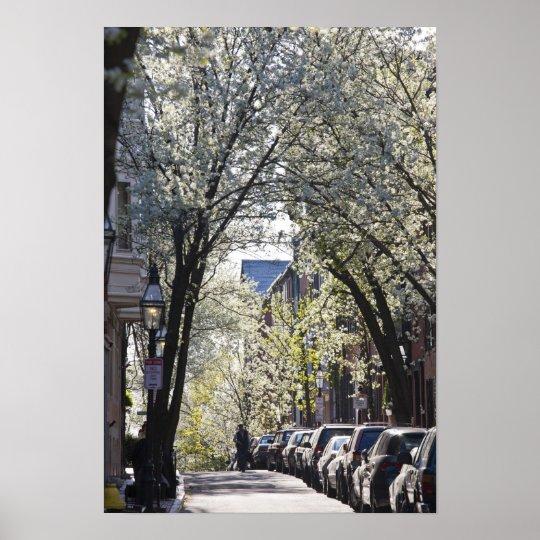USA, Massachusetts, Boston, Beacon Hill. Poster