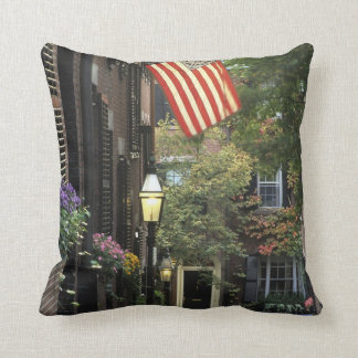 USA, Massachusetts, Boston, Beacon Hill. Throw Pillow