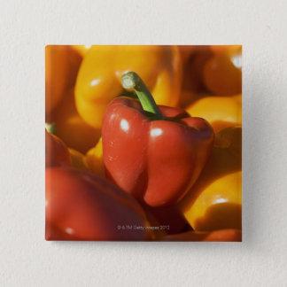 USA, Massachusetts, Boston, bell peppers Pinback Button