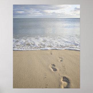 USA Massachusetts Cape Cod footprints on Poster