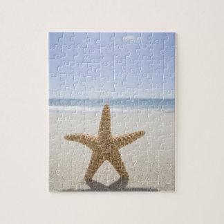 USA, Massachusetts, Cape Cod, Nantucket, close Jigsaw Puzzle