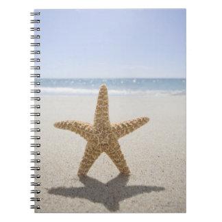 USA, Massachusetts, Cape Cod, Nantucket, close Spiral Notebook