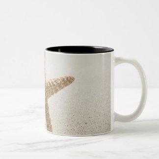 USA, Massachusetts, Cape Cod, Nantucket, close Two-Tone Coffee Mug