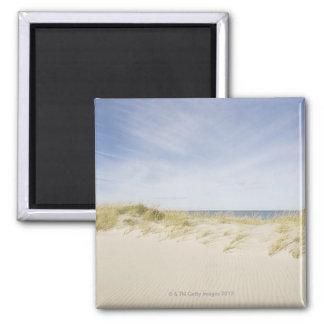 USA, Massachusetts, Cape Cod, Nantucket, sandy 2 Inch Square Magnet