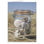 USA, Massachusetts, close up of shells in jar Greeting Card