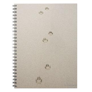 USA, Massachusetts, dog's track on sand Note Book