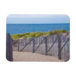 USA, Massachusetts. Dunes And Path Magnet