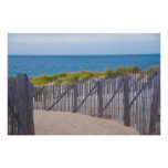 USA, Massachusetts. Dunes And Path Poster
