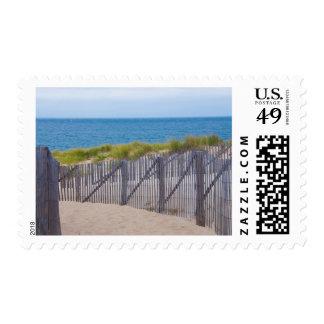 USA, Massachusetts. Dunes And Path Stamp
