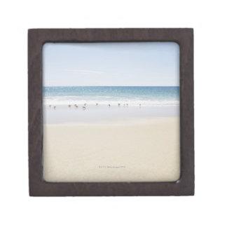 USA, Massachusetts, Empty beach 3 Keepsake Box
