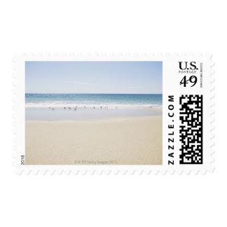 USA, Massachusetts, Empty beach 3 Stamps