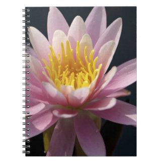 USA, Massachusetts, Great Barrington, lily pad Spiral Notebook