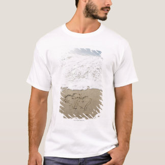 USA, Massachusetts, Hearts drawn on sandy beach 3 T-Shirt