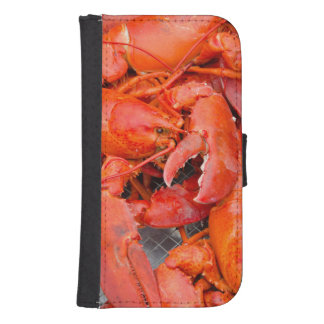 USA, Massachusetts, Martha's Vineyard Galaxy S4 Wallet Case